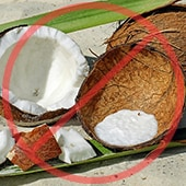 Coconut Shells and Husks