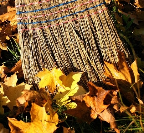 Sweeping Leaf Debris